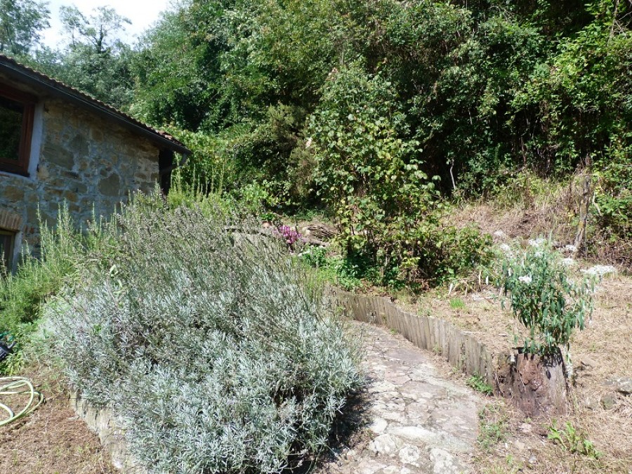 Images for Gombereto, Bagni di Lucca EAID: BID:italianprop